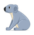 koala animal sitting on a white background vector image vector image