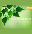 spring background with leaves vector image