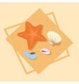 star fish and shells icon summer sea vacation vector image vector image
