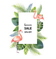 watercolor summer sale banner of tropical vector image
