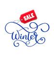 winter sale hand written inscription on christmas vector image