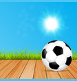 a bright sunny day the ball vector image vector image