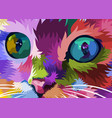 cat face close to colorful eyes vector image vector image
