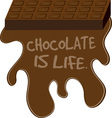 Chocolate Is Life vector image vector image