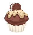 cupcake or brownie with cocoa chocolate and vector image vector image