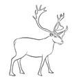 drawing reindeer vector image vector image