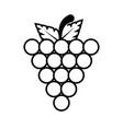 grape fruit food vector image vector image