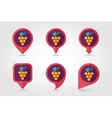Grapes mapping pins icons vector image vector image