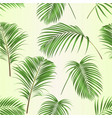 seamless texture palm leaves decoration plant set vector image vector image