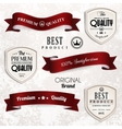 set retro vintage ribbons and badges vector image