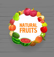 tropical fruits and berries frame farm food vector image