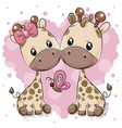 two cartoon giraffes on a heart background vector image vector image