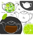 Hand drawn tea concept vector image