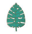 leaf tropical cartoon nature cartoon isolated vector image