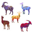 polygonal silhouettes of animals vector image vector image