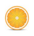 realistic orange slice vector image vector image