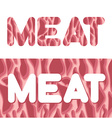 Meat Letters from texture of fresh meat Raw red vector image