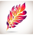 Abstract colorful isolated pink feather vector image vector image