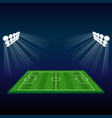 football field with lights vector image vector image