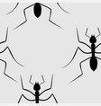 insects seamless vector image