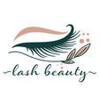 lash beauty studio procedures for eyelashes