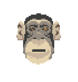 monkey abstract isolated vector image vector image