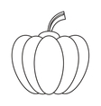 outline pumpkin harvest bittersweet vegetable icon vector image
