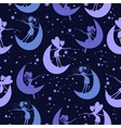 Pattern with fairy vector image vector image