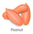 peanut mockup realistic style vector image vector image