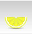 realistic lemon slice vector image vector image