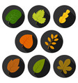 set of eight autumn leaves in circles with shadows vector image vector image