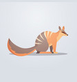 numbat icon cute cartoon wild animal symbol vector image vector image