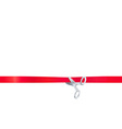 Scissors cut the red ribbon isolated on white vector image