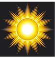 sun on black background vector image vector image