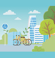 urban ecology parking bicycles transport buildings vector image