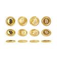 bitcoin coin set vector image