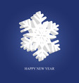 beautiful volumetric snowflake with text vector image