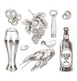 beer food and brunch of hop graphic vector image vector image
