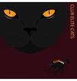 Elite cats vector image vector image