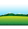 Glade with flower in mountain vector image vector image