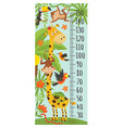 growth measure with giraffe jungle animals vector image vector image