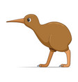 kiwi bird on a white background vector image vector image