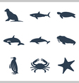 Maritime animals icon set vector image vector image