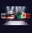 realistic boxing gloves with prints of the usa vector image vector image