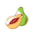 ripe avocado isolated icon vector image vector image