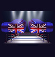 boxing gloves with print of national flags of vector image vector image