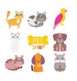 pet shop cute animals cat dog bird rodent vector image vector image