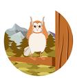 Screech-Owl on the flat tree background