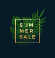 summer sale tropical banner fern and monstera vector image