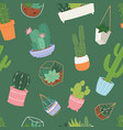 cactus and succulent flower green home plant vector image